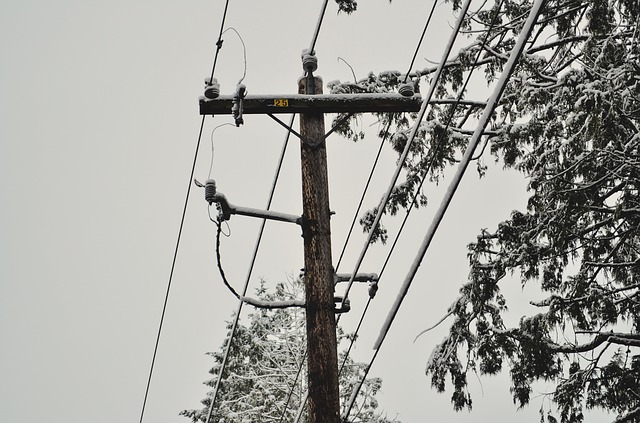 Power lines in the winter